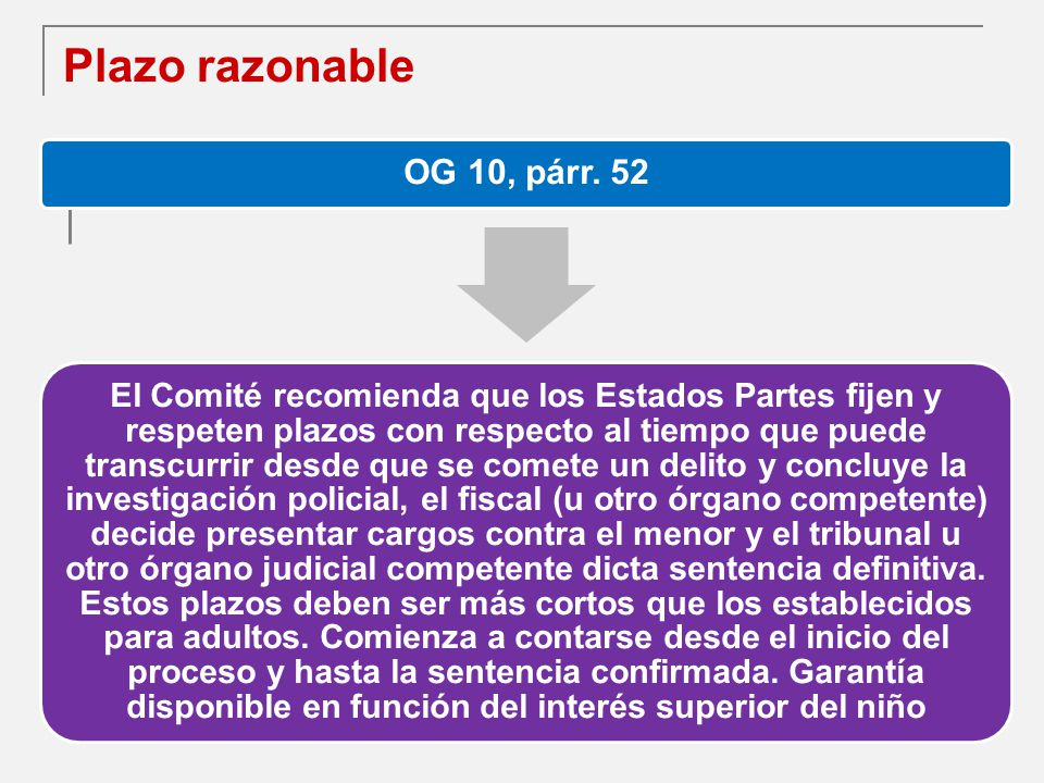Plazo razonable OG 10, párr. 52