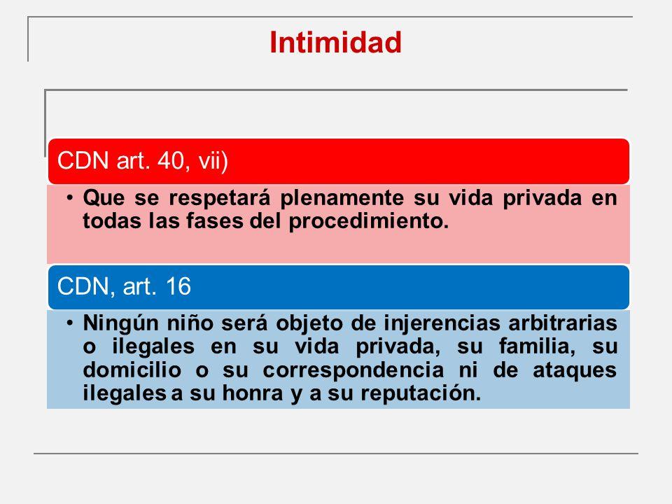 Intimidad CDN art. 40, vii) CDN, art. 16