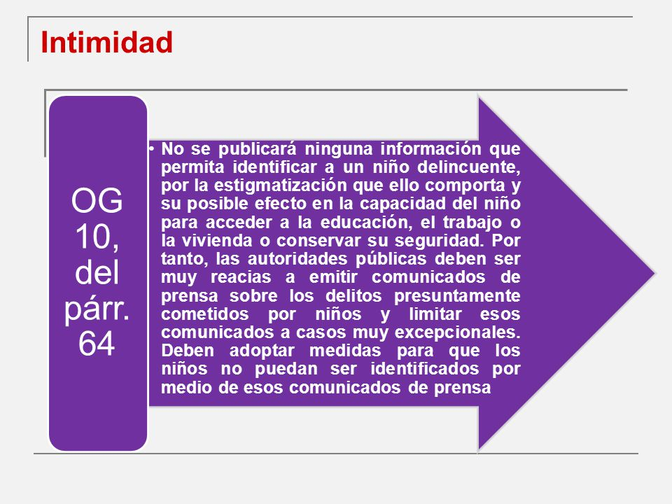 Intimidad OG 10, del párr. 64.