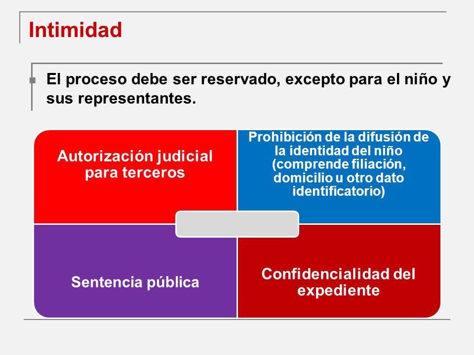 Autorización judicial para terceros Confidencialidad del expediente