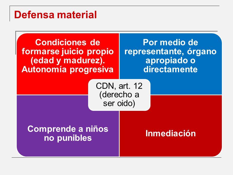 Defensa material CDN, art. 12 (derecho a ser oido)