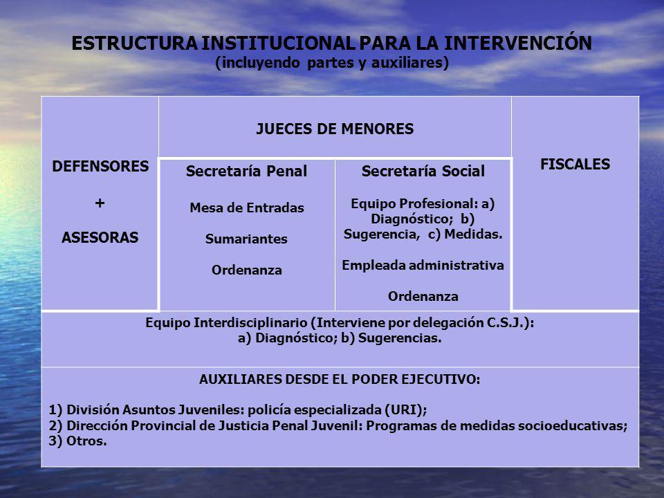 ESTRUCTURA INSTITUCIONAL PARA LA INTERVENCIÓN (incluyendo partes y auxiliares)