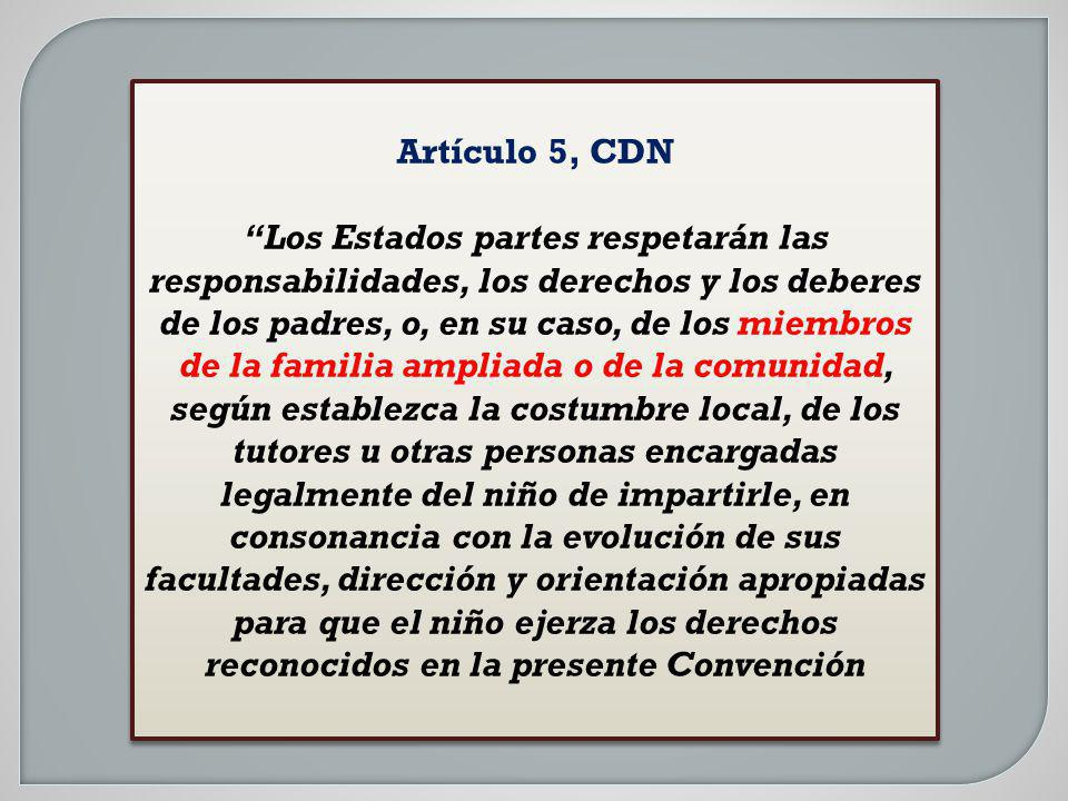 Artículo 5, CDN