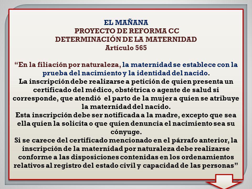 DETERMINACIÓN DE LA MATERNIDAD
