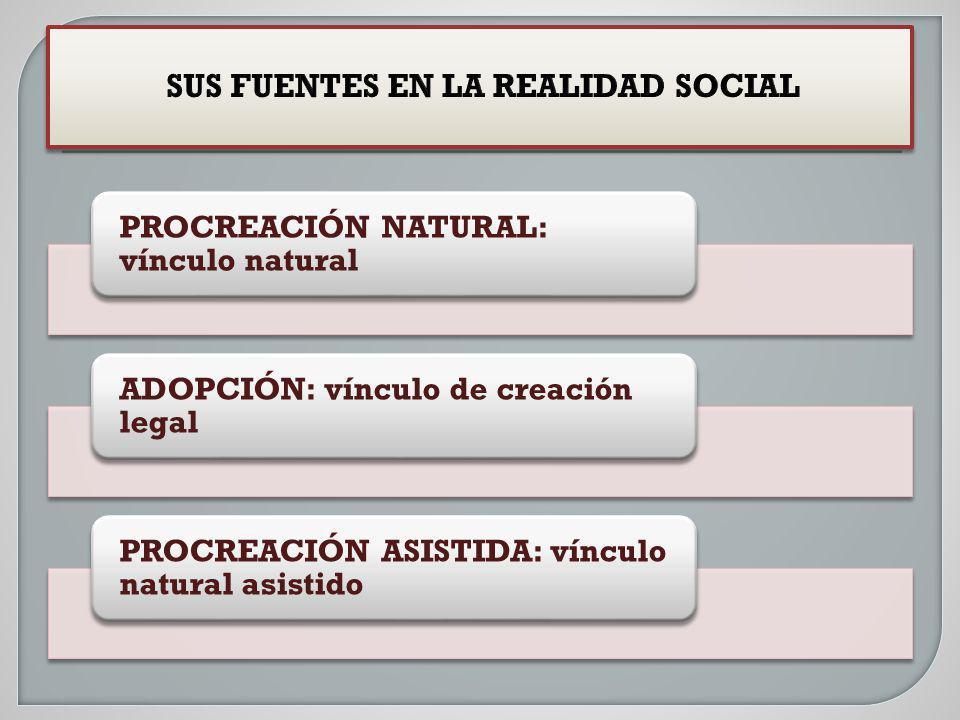 SUS FUENTES EN LA REALIDAD SOCIAL