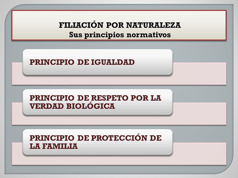 FILIACIÓN POR NATURALEZA Sus principios normativos