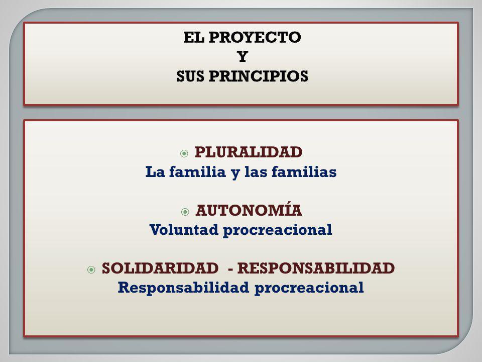 EL PROYECTO Y SUS PRINCIPIOS