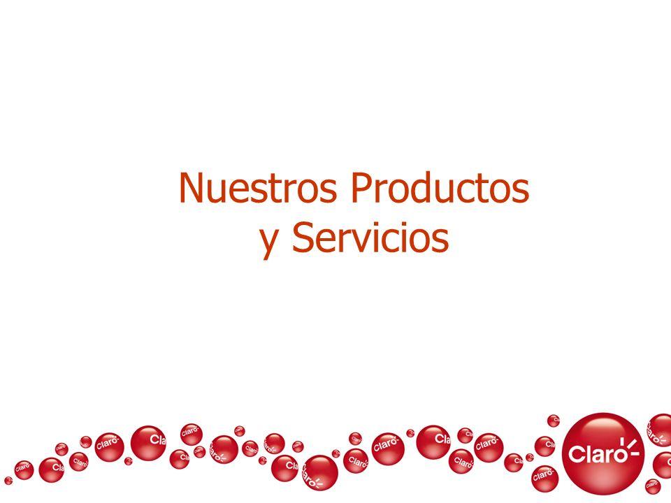 Nuestros Productos y Servicios