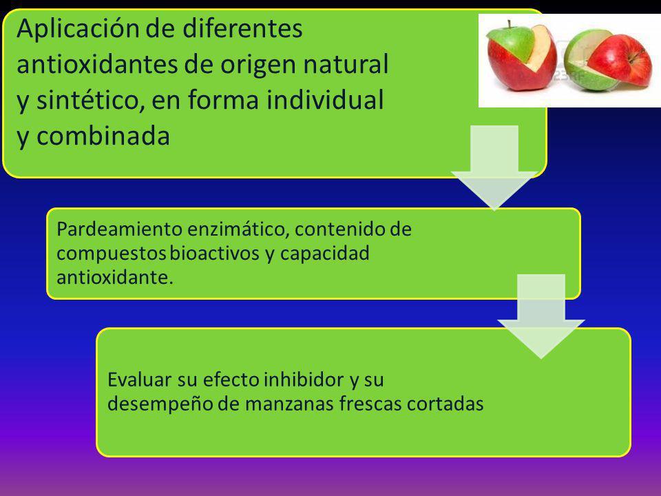 Aplicación de diferentes antioxidantes de origen natural y sintético, en forma individual y combinada