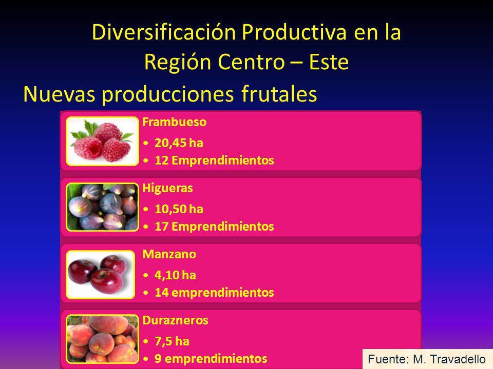 Diversificación Productiva en la