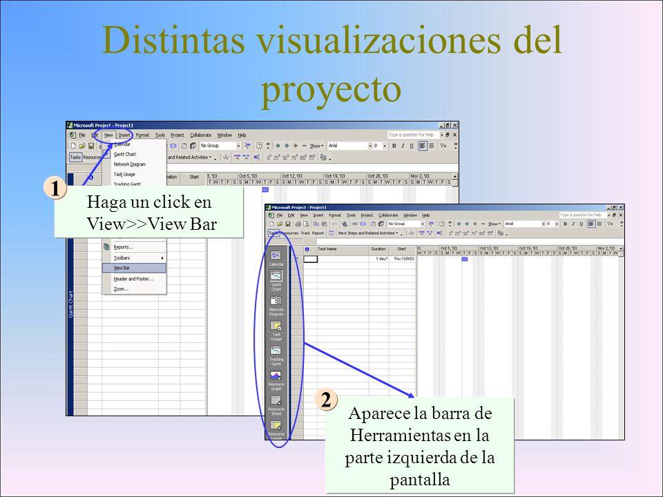 Distintas visualizaciones del proyecto