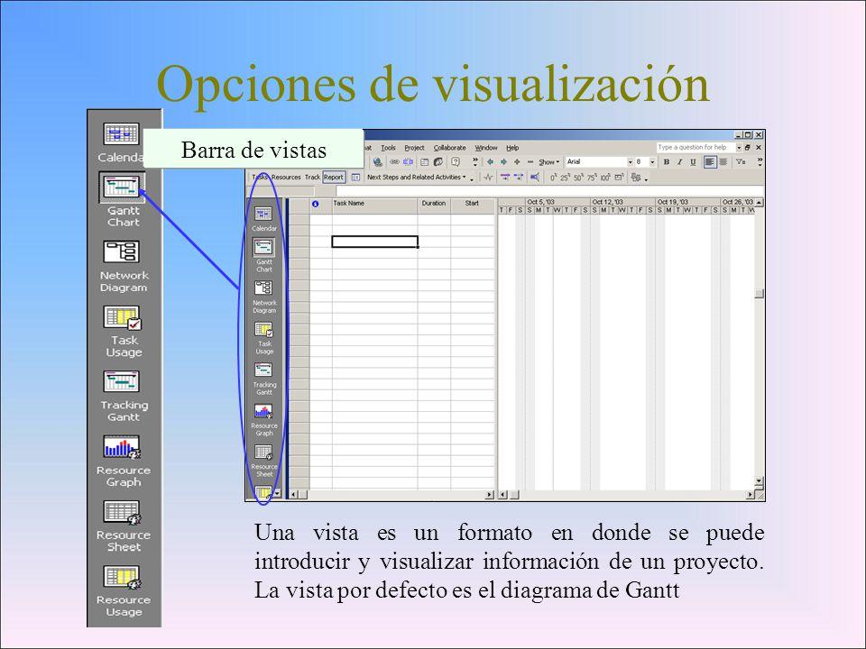 Opciones de visualización
