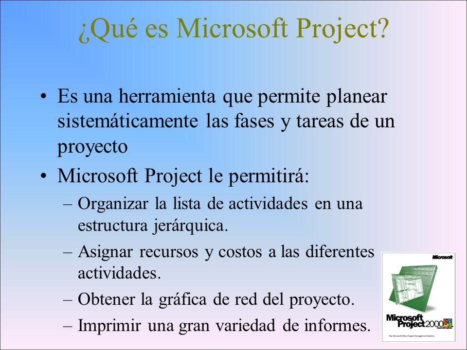 ¿Qué es Microsoft Project