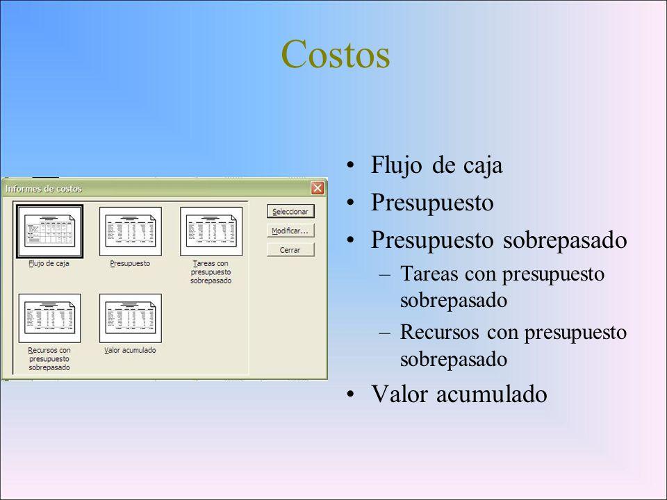 Costos Flujo de caja Presupuesto Presupuesto sobrepasado