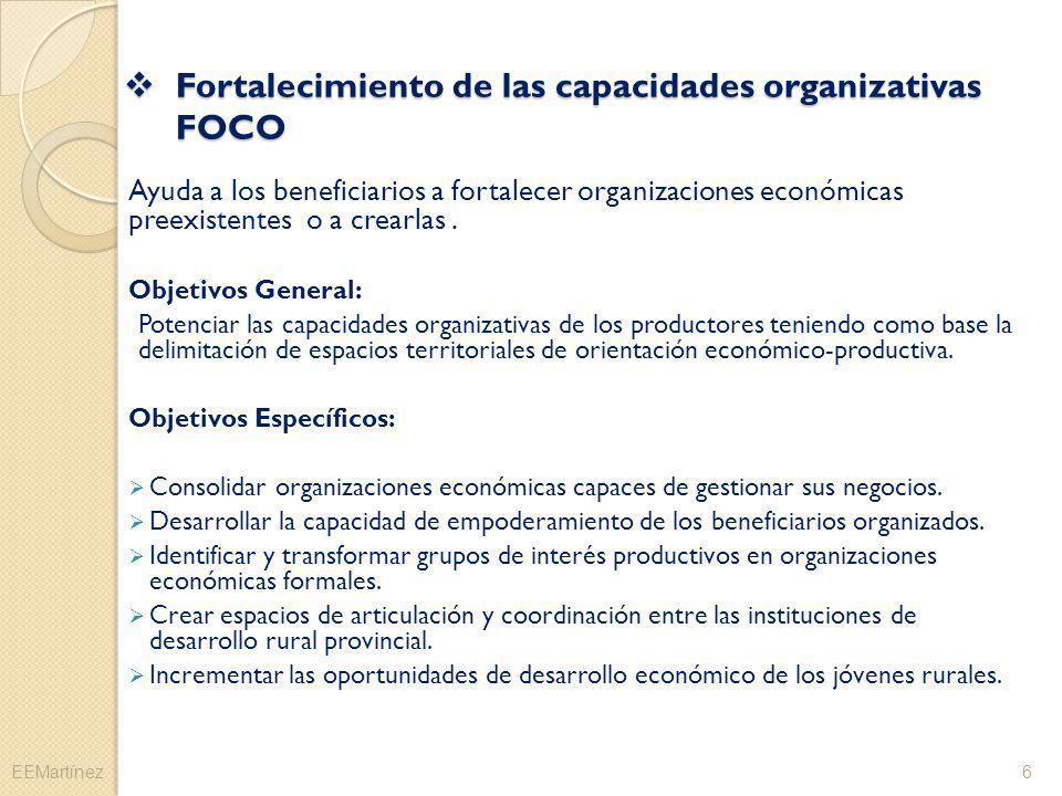 Fortalecimiento de las capacidades organizativas FOCO