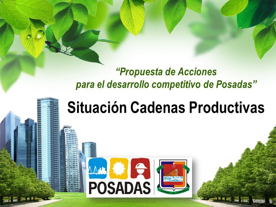 Propuesta de Acciones para el desarrollo competitivo de Posadas Situación Cadenas Productivas