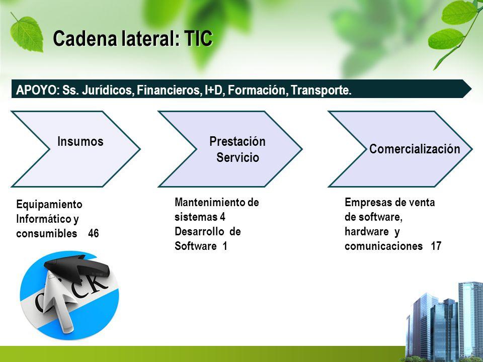 Cadena lateral: TIC APOYO: Ss. Jurídicos, Financieros, I+D, Formación, Transporte. Insumos. Prestación.