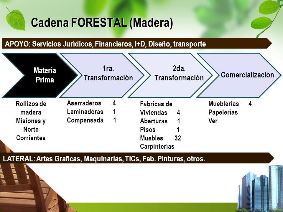 Cadena FORESTAL (Madera)