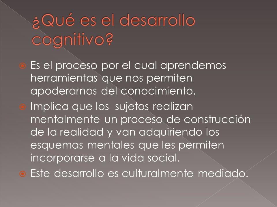 ¿Qué es el desarrollo cognitivo