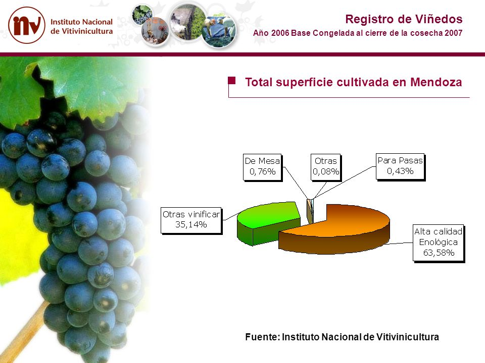 Total superficie cultivada en Mendoza