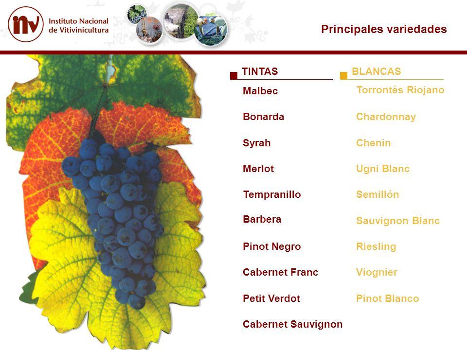 Principales variedades