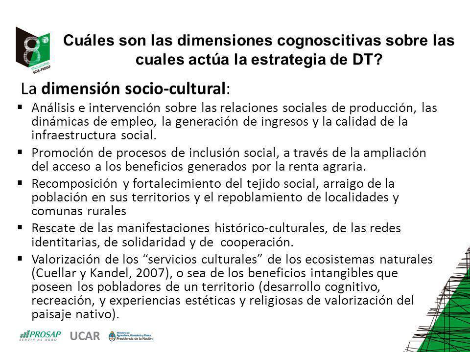 La dimensión socio-cultural: