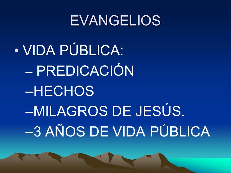 EVANGELIOS VIDA PÚBLICA: HECHOS MILAGROS DE JESÚS.