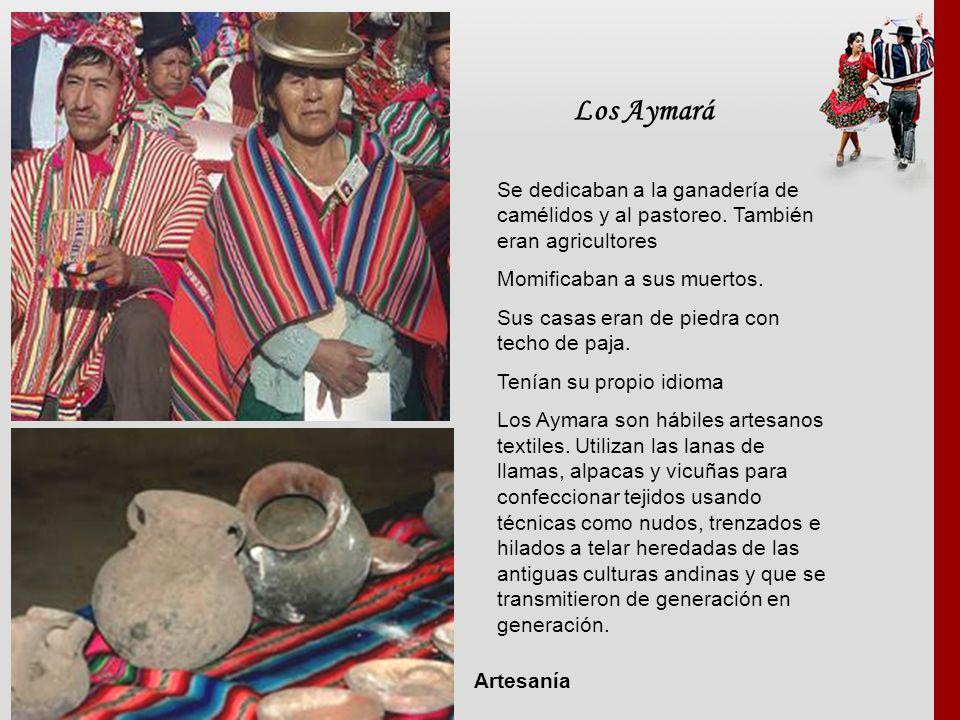 Los Aymará Se dedicaban a la ganadería de camélidos y al pastoreo. También eran agricultores. Momificaban a sus muertos.
