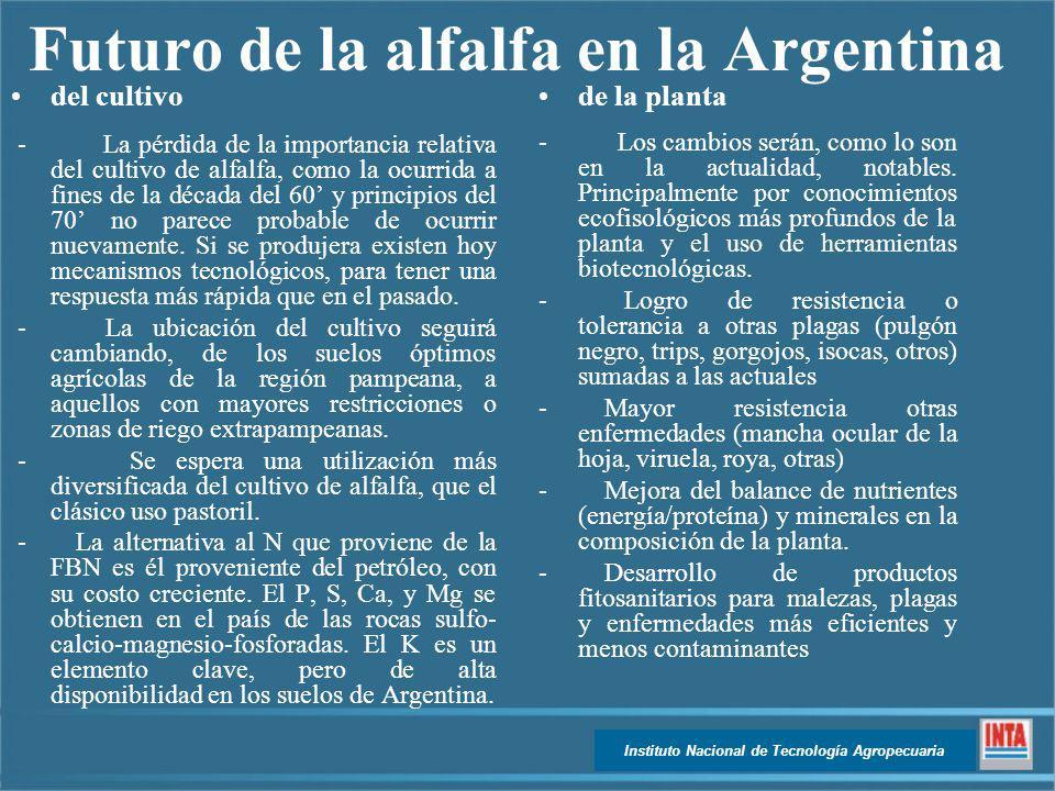 Futuro de la alfalfa en la Argentina