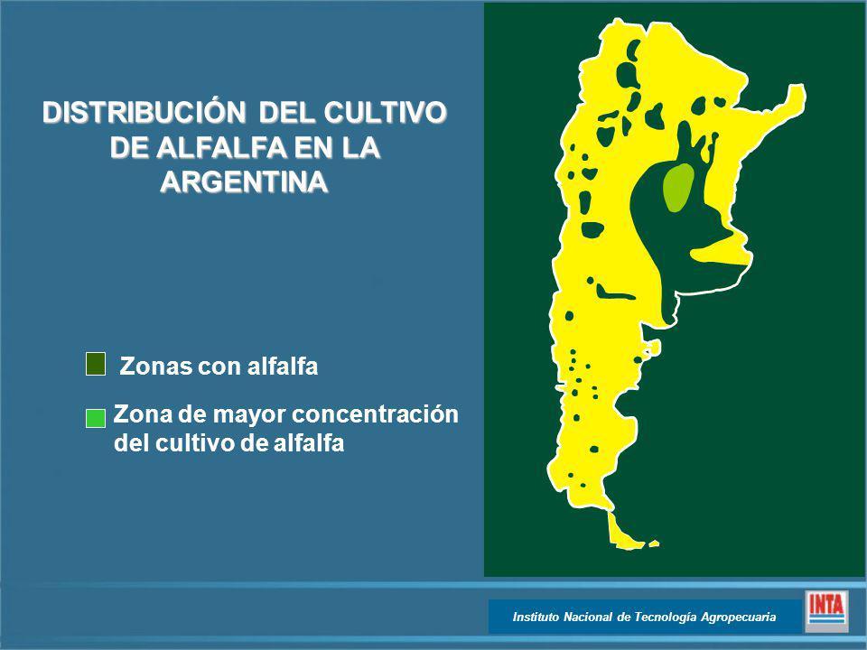 DISTRIBUCIÓN DEL CULTIVO DE ALFALFA EN LA ARGENTINA