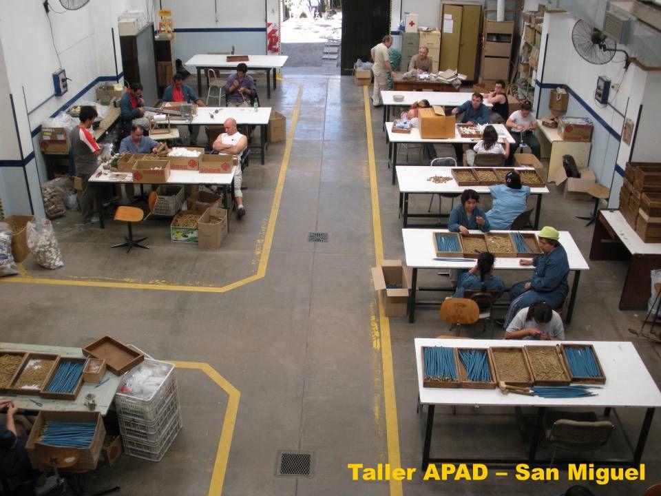Taller APAD – San Miguel