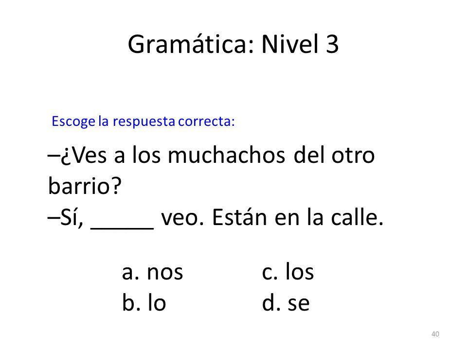 Gramática: Nivel 3 –¿Ves a los muchachos del otro barrio