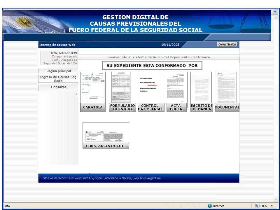 CAUSAS PREVISIONALES DEL FUERO FEDERAL DE LA SEGURIDAD SOCIAL