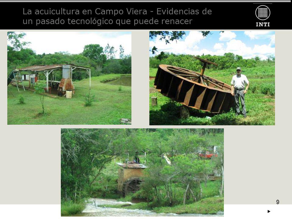 La acuicultura en Campo Viera - Evidencias de un pasado tecnológico que puede renacer