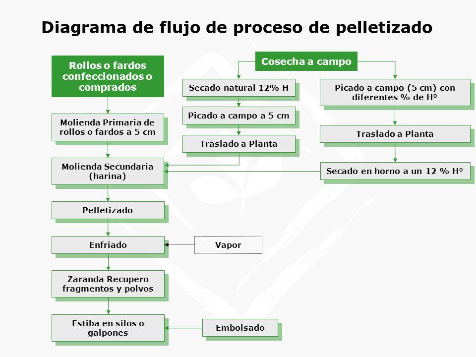 Diagrama de flujo de proceso de pelletizado
