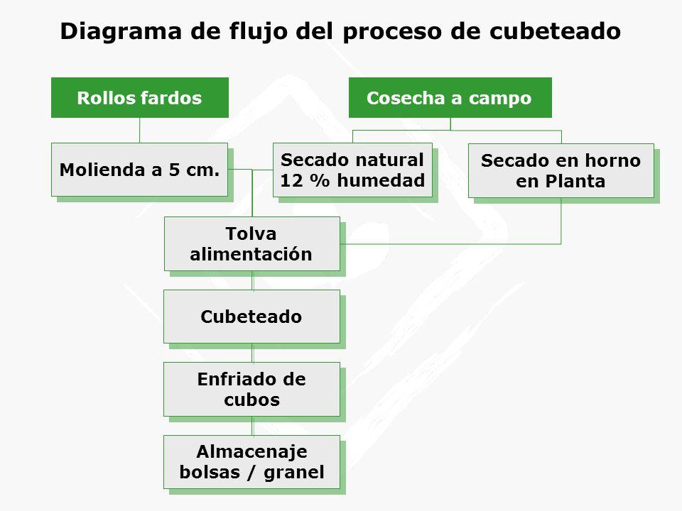 Diagrama de flujo del proceso de cubeteado