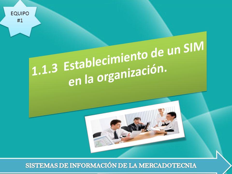 1.1.3 Establecimiento de un SIM en la organización.