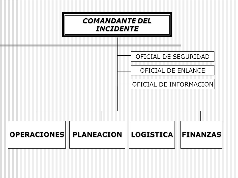 OFICIAL DE INFORMACION