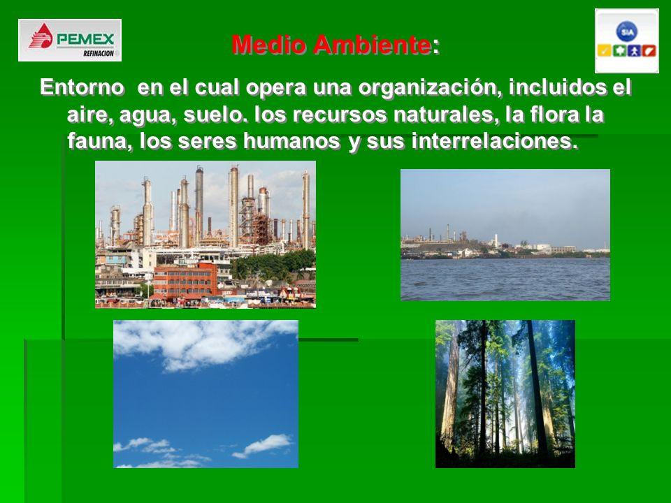 Medio Ambiente: