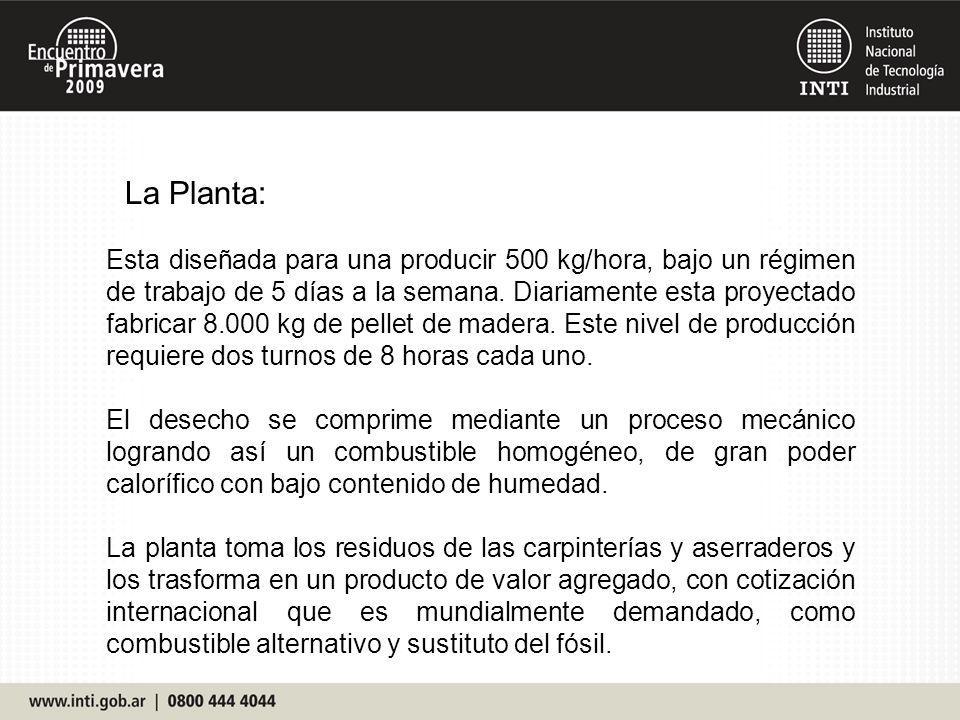 La Planta:
