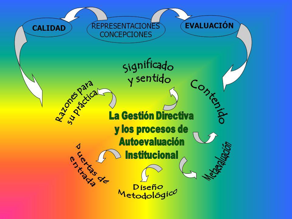 REPRESENTACIONES CONCEPCIONES EVALUACIÓN CALIDAD Significado y sentido