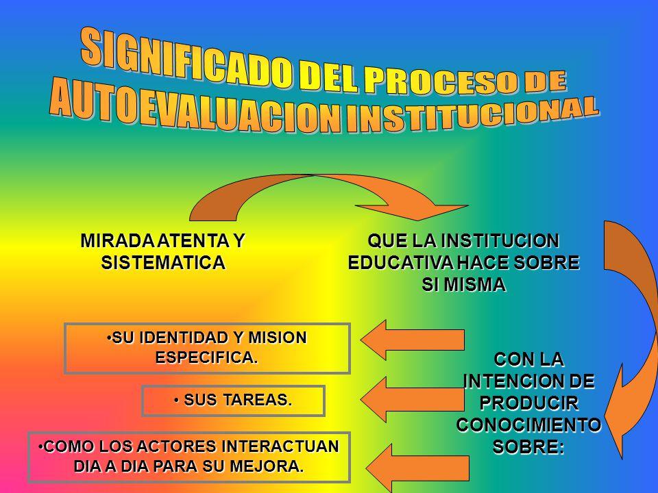 SIGNIFICADO DEL PROCESO DE AUTOEVALUACION INSTITUCIONAL