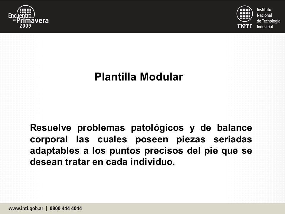 Plantilla Modular