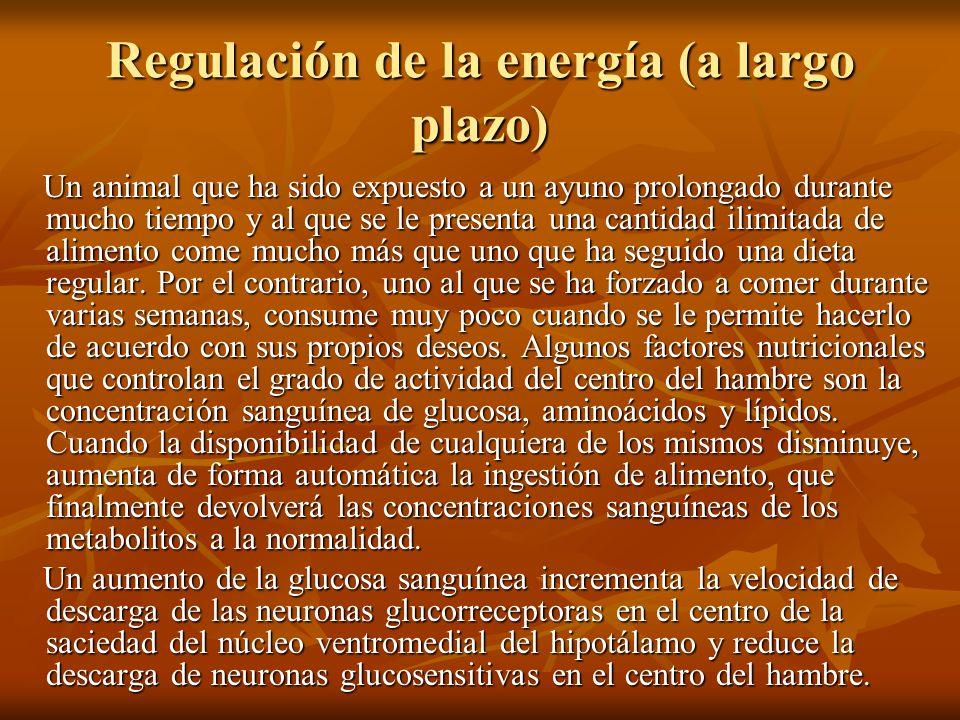 Regulación de la energía (a largo plazo)