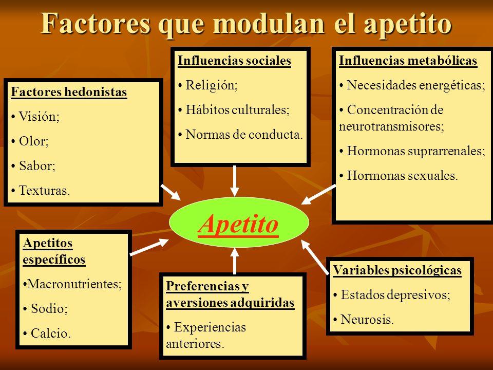 Factores que modulan el apetito