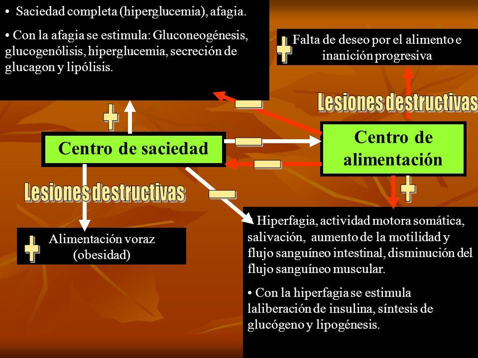 Lesiones destructivas Centro de alimentación Lesiones destructivas