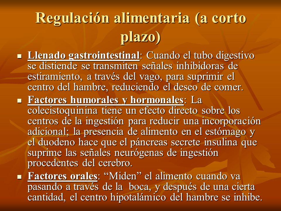 Regulación alimentaria (a corto plazo)