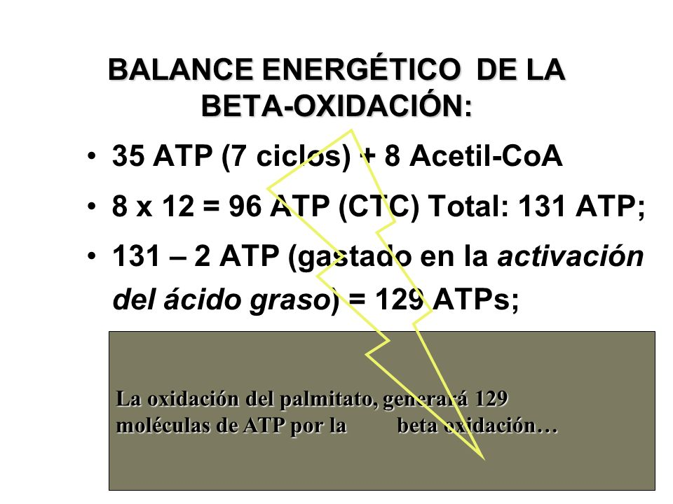 BALANCE ENERGÉTICO DE LA BETA-OXIDACIÓN: