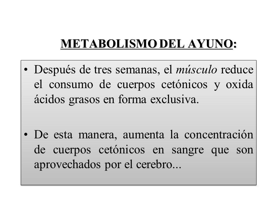 METABOLISMO DEL AYUNO: