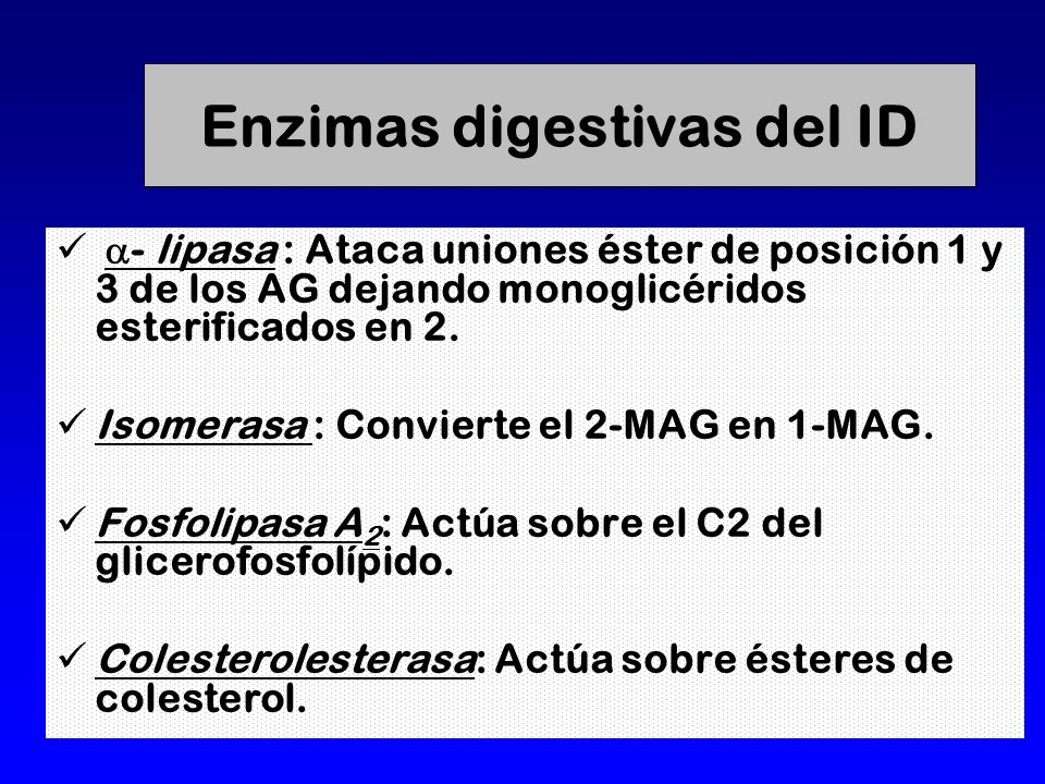 Enzimas digestivas del ID
